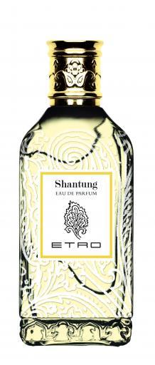 Etro Shantung