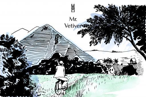 Une Nuit Nomade Mr Vetiver Illustration